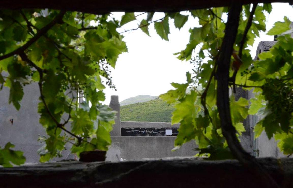 Case affitto Corsica: dettaglio ravvicinato del pergolato visibile dalla Casetta Pergola